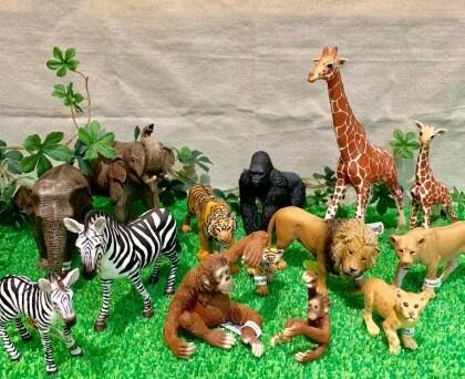 自分だけの動物園☆