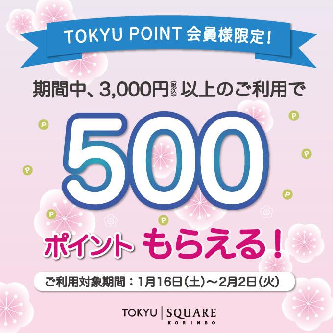 税込3,000円以上のお買物・お食事で500ポイントプレゼントキャンペーン